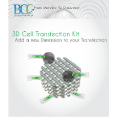 3D-DNA96 Cell Transfection Kit