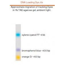 DNA Loading Dye, 6x