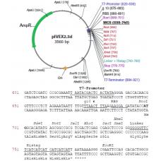 RTS pIVEX E. coli His-tag, 2nd Gen. Vector Set